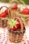 cp01-fraises-panier-1