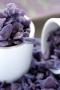 cp11-tube-de-violettes